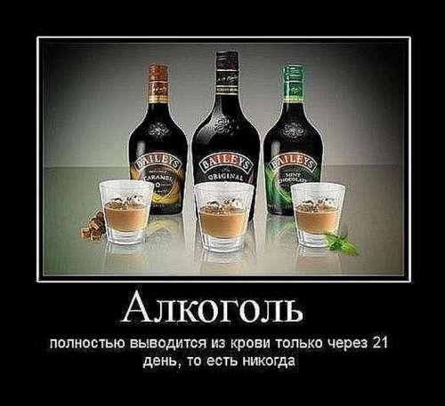 Как похудеть если я пью алкоголь
