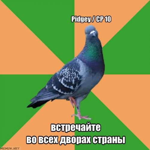 К чему если голубь накакал на одежду